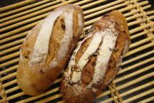 Nos divers pains